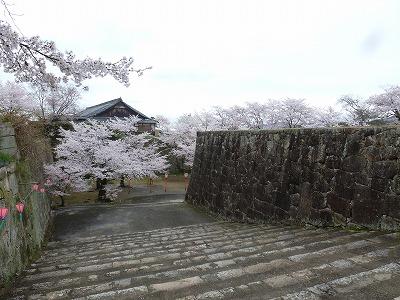 巨大な石垣が城の堅牢さを物語っています。